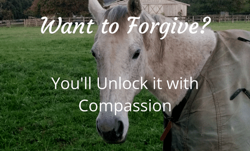 Want to Forgive-compassion-mental-health