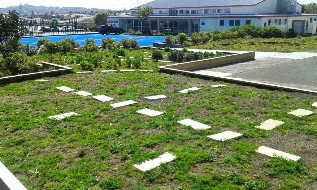 School Garden September 2014
