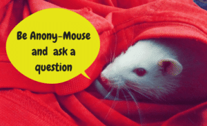 Be Anony-Mouse and ask a question